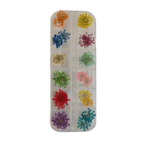 Flores Desidratadas – 12 Cores – P